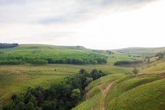 Zielony pasmo górskie krajobraz w lecie Obrazy Royalty Free