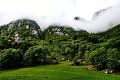 Zielony pasmo górskie w Norwegia zakrywał z mgłą, mgłą i chmurami, przy szczytami z drzewami, trawą i paśnikiem w przedpolu, Obrazy Stock