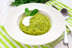 Zielony pease puree pudding z szpinakiem i pikantność Zdjęcie Stock