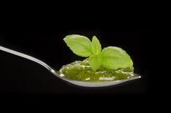 Zielony pesto w łyżce z basilu liściem Obrazy Stock