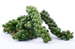 zielony pieprz Obrazy Stock
