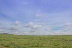 Zielony pola i błękitów niebo z chmurami - blisko Almaty Kazachstan s Zdjęcie Royalty Free