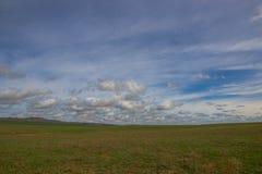 Zielony pola i błękitów niebo z chmurami - blisko Almaty Kazachstan s Fotografia Stock