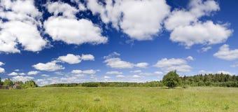 Zielony pole obrazy royalty free