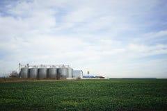 Zielony pole i kruszcowi silosy w clrear niebie Zdjęcia Stock