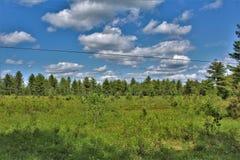 Zielony pole lokalizować w Childwold, Nowy Jork, Stany Zjednoczone zdjęcia royalty free