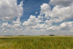Zielony pole na tle naszły chmurny niebo fotografia stock