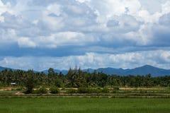 Zielony pole pod niebieskiego nieba i bielu chmurami Obrazy Stock