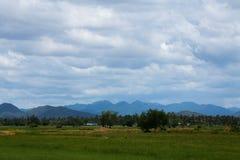 Zielony pole pod niebieskiego nieba i bielu chmurami Zdjęcie Royalty Free