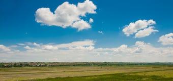 Zielony pole pod pięknym zmrokiem - niebieskie niebo Fotografia Stock