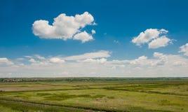 Zielony pole pod pięknym zmrokiem - niebieskie niebo Fotografia Royalty Free
