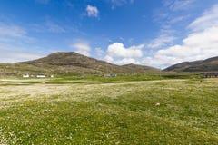 Zielony pole - Wyspa Barra Zdjęcia Royalty Free