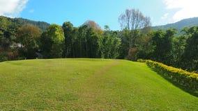 Zielony pole z światłem słonecznym na nim Fotografia Royalty Free