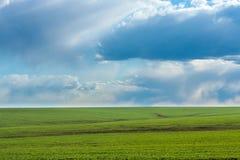 Zielony pole z świeżą wibrującą trawą i niebieskim niebem z dramatycznymi chmurami przy dniem Fotografia Stock