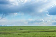 Zielony pole z świeżą wibrującą trawą i niebieskim niebem z dramatycznymi chmurami przy dniem Zdjęcia Stock