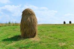 Zielony pole z heyrick Zdjęcia Stock