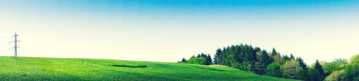 Zielony pole z pilonami i drzewami Obraz Stock