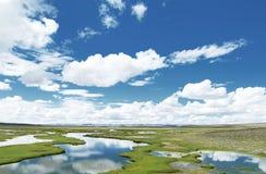 Zielony pole z wodą, niebieskie niebo i chmury, obraz royalty free