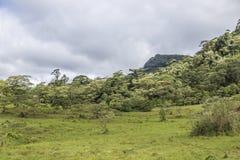 Zielony praire przy Peñas Blancas masywu naturalną rezerwą, Nikaragua zdjęcia stock