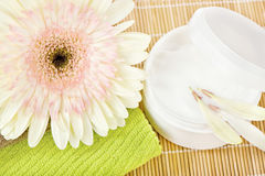 Zielony ręcznik z skóry opieki produktem fotografia royalty free