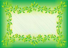 zielony ramowy liścia Obrazy Royalty Free