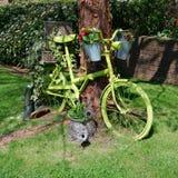 Zielony rower w ogródzie fotografia royalty free