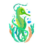 Zielony seahorse Obrazy Stock