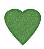 zielony serce obraz stock