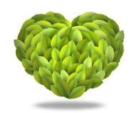 zielony serce odizolowywał Ilustracji