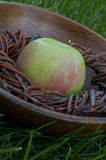 Zielony soczysty jabłko w drewnianym talerzu Zdjęcia Stock