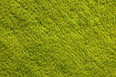 Zielony struktury tło Fotografia Royalty Free