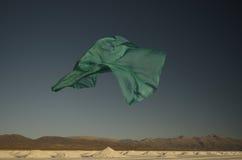 Zielony szalika latanie Zdjęcie Royalty Free