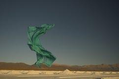 Zielony szalika latanie Obraz Stock