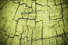 Zielony szalunek poczta przekrój poprzeczny Obraz Royalty Free