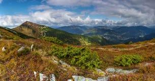 zielony szczyt Obrazy Royalty Free