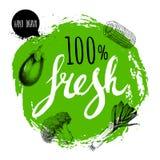 Zielony szorstki okrąg z ręka malującymi listami Grawerować nakreśleń stylowych warzywa Oberżyna, kukurydzany kawałek, leek i bro Zdjęcia Royalty Free