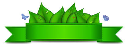 Zielony sztandar z kopii przestrzenią Zdjęcia Stock