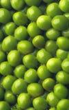 zielony tło groch zdjęcia stock