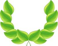zielony tło liść Zdjęcie Stock