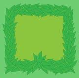 Zielony tło odskakujący zielonymi liśćmi Obrazy Royalty Free