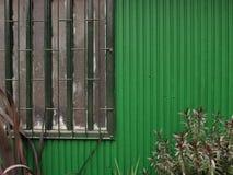 Zielony tło Symetryczny tło z roślinami fotografia royalty free