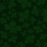 zielony tła ivy Zdjęcia Stock