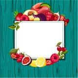 Zielony tło z tropikalnymi owoc ilustracja wektor