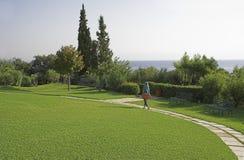 zielony trawnik Zdjęcie Stock