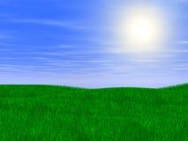 zielony trawnik Obrazy Stock