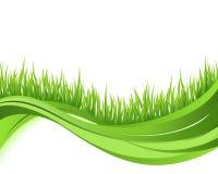 Zielony trawy natury fala tło ilustracji