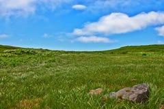 zielony trawy wzgórze obrazy stock