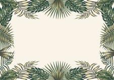 Zielony tropikalny rabatowy biały tła A4 układ ilustracja wektor