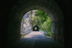 zielony tunelu Zdjęcia Stock