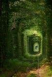 Zielony tunne Zdjęcie Royalty Free